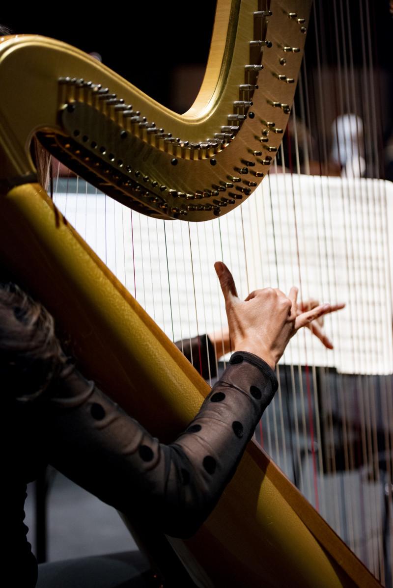 Aanvoerder Harp / Principal Harp